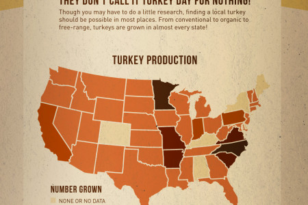 How to Have a 100-Mile Thanksgiving Infographic
