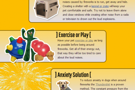 How To Help Pets Cope With Fireworks Infographic