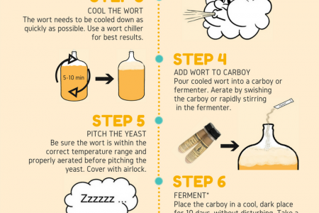 How to Homebrew Infographic