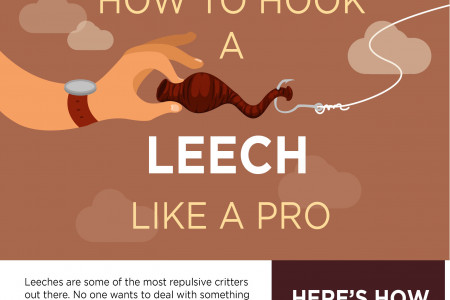 How to hook a leech Infographic
