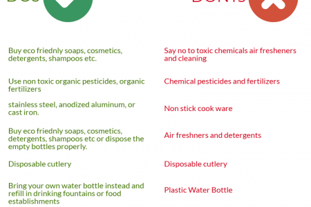 How To Lead A Conscious and Sustainable Living Infographic