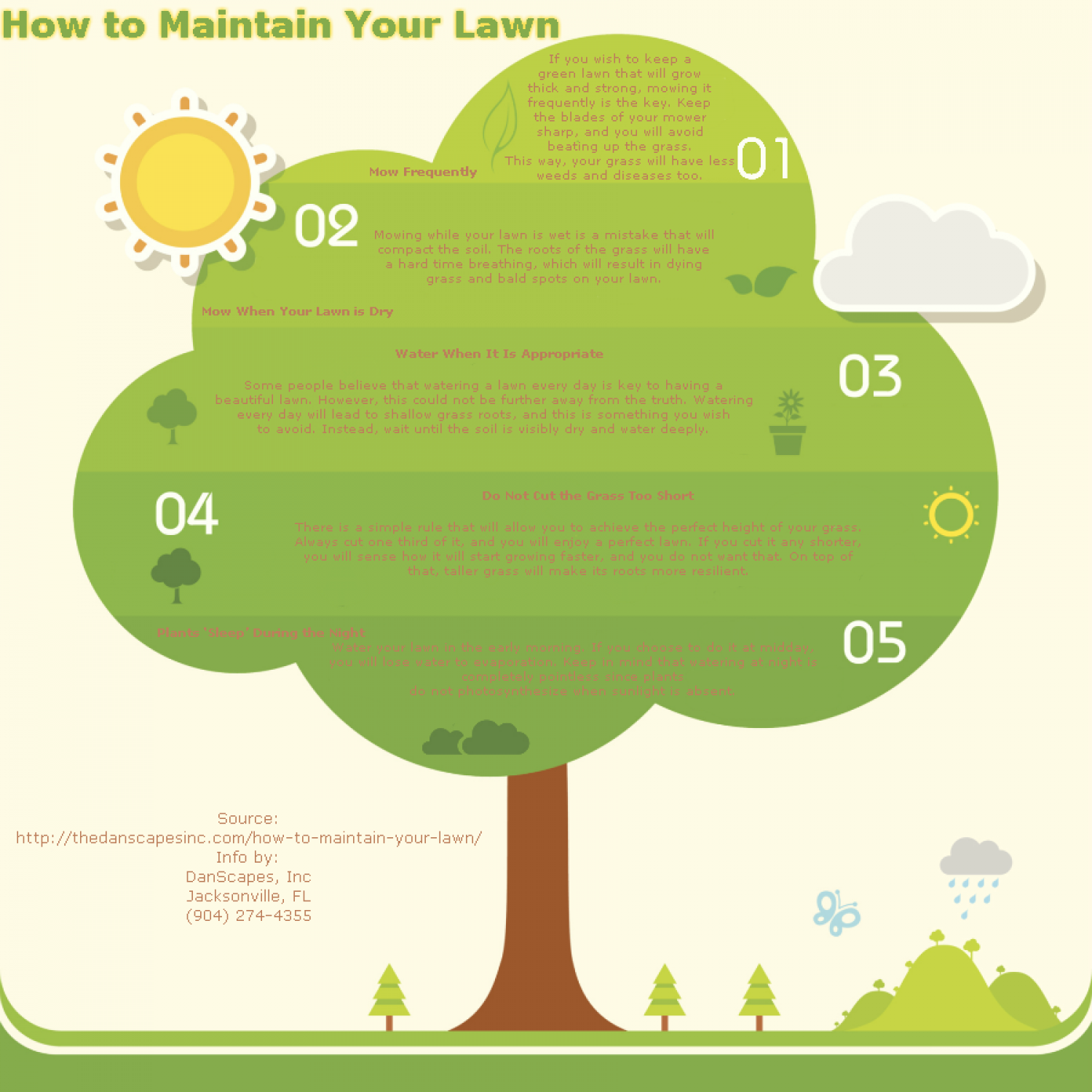 How to Maintain Your Lawn Infographic