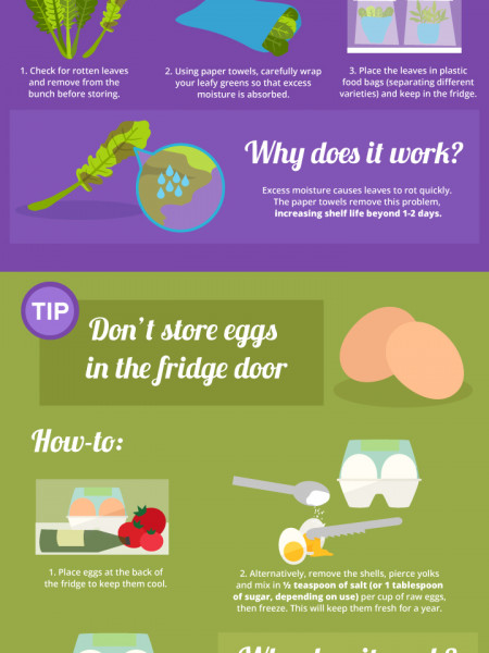 How to Make Fresh Food Last Longer Infographic