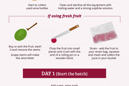 How to Make Your Own Wine Infographic