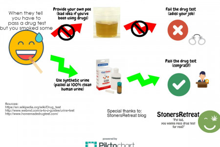 How To Pass A Urine Drug Test With Synthetic Urine Infographic