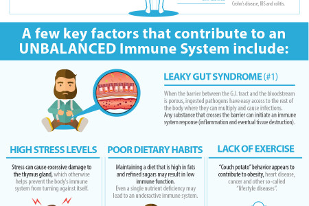 How to Prevent a Leaky Gut and Maintain a Balanced Immune System Infographic