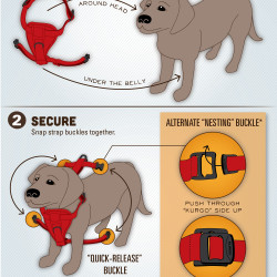 how to put on a dog harness. Black Bedroom Furniture Sets. Home Design Ideas
