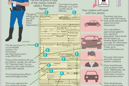 How to Read a California Traffic Ticket  Infographic