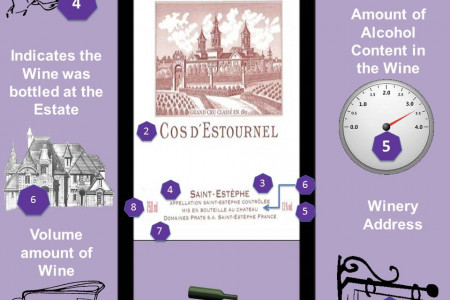 How to Read a French Wine Label Infographic