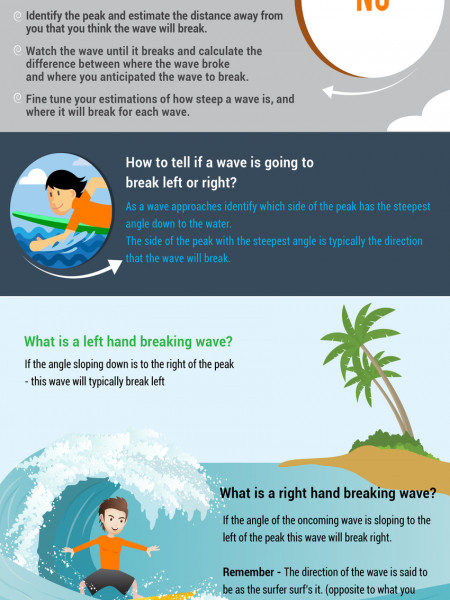 How To Read A Wave  Infographic
