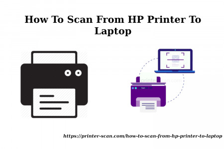 How To Scan From HP Printer To Laptop? - Quick Steps Infographic