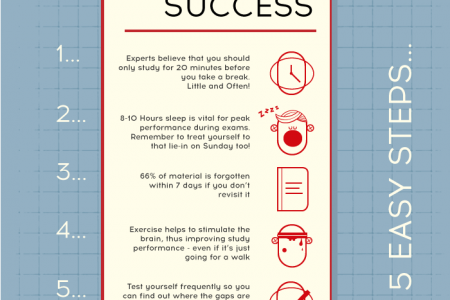 How to Seek Exam Success in 5 Easy Steps! Infographic