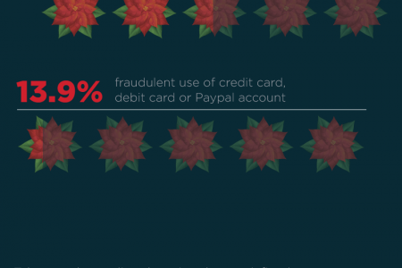How to Shop Safely Online This Holiday Season Infographic
