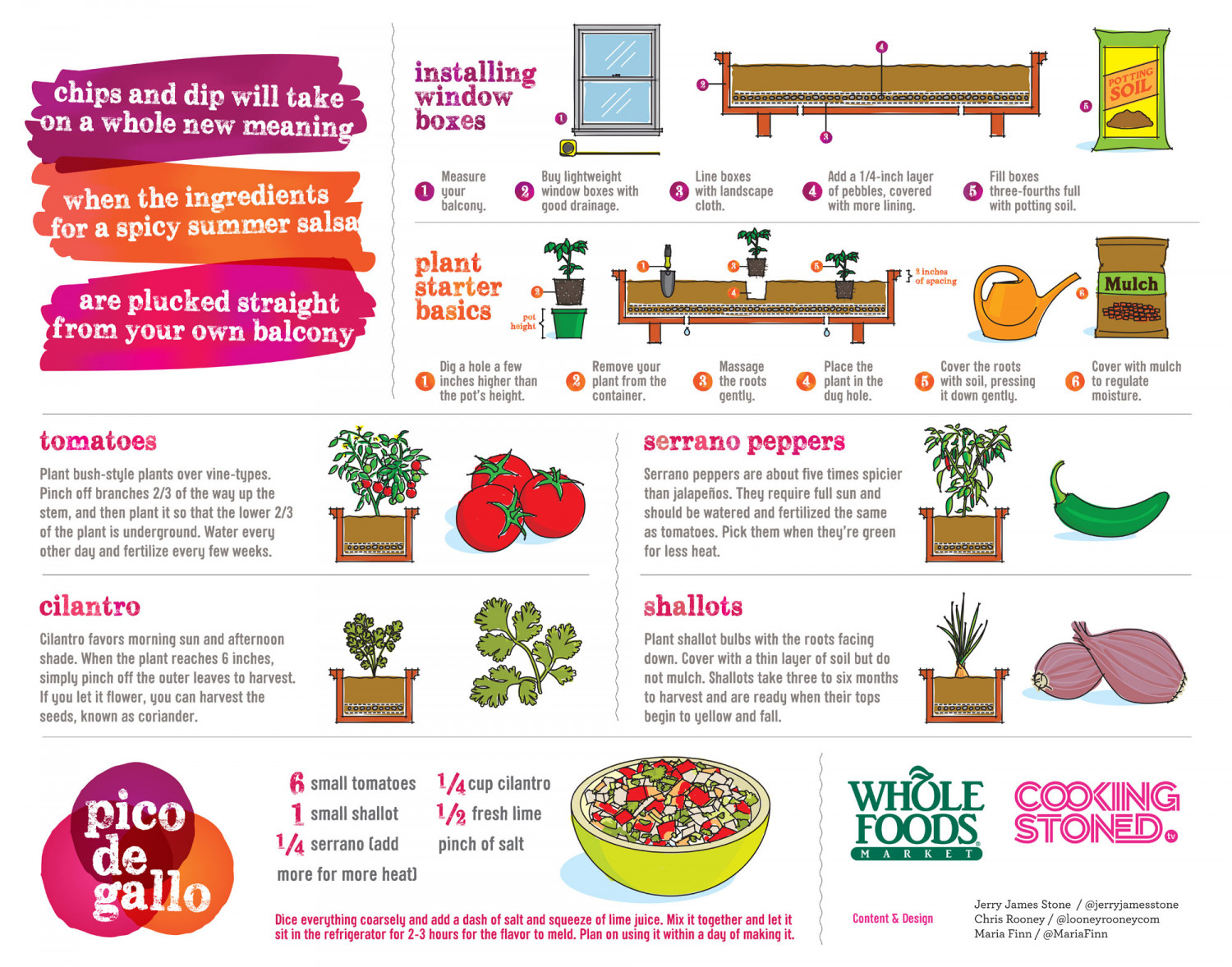 How to Start a Pico de Gallo Garden Infographic