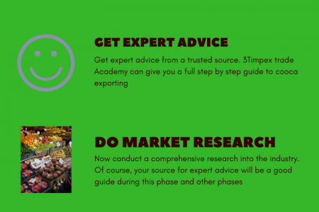 How to Start Cocoa Exporting in 6 Simple Steps Infographic