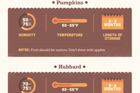 How to Store Winter Squash Infographic