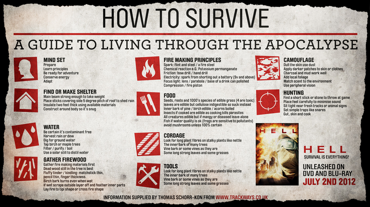 How to Survive the Apocalypse Infographic