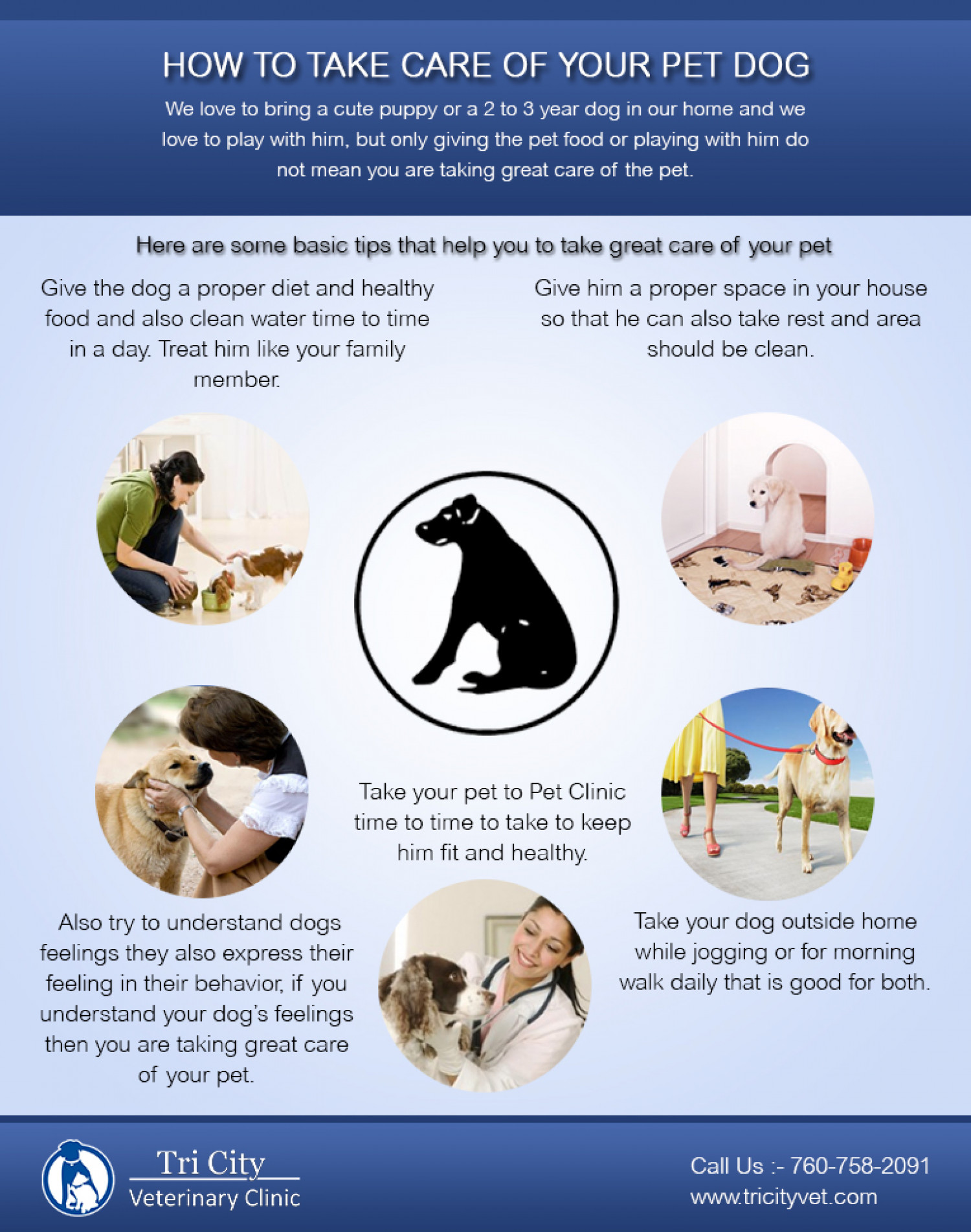 how to take care of your pet dog visual ly