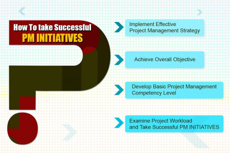 How to take Successful Project Management Initiatives Infographic