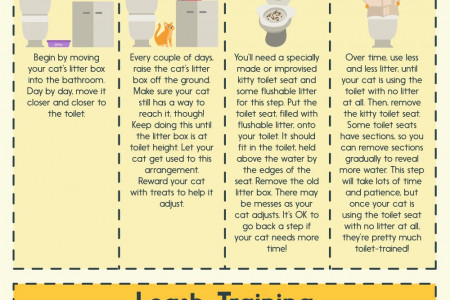 How to Teach Your Cat to Do Tricks Infographic