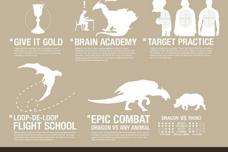 How to Train Your Dragon Infographic