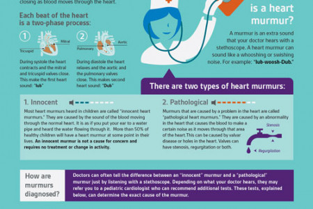 How To Understand Heart Murmurs Infographic