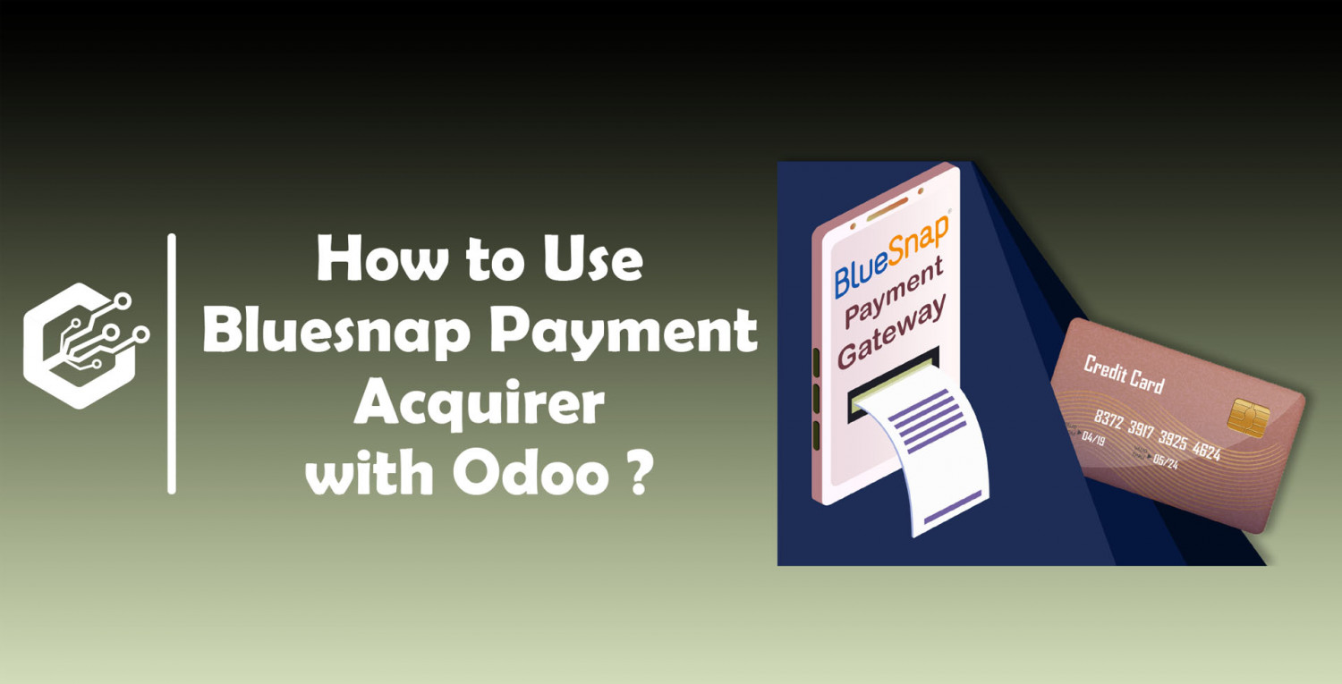 How To Use BlueSnap Payment Acquirer With Odoo ? | CandidRoot Solutions Infographic