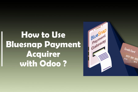 How To Use BlueSnap Payment Acquirer With Odoo ?   CandidRoot Solutions Infographic