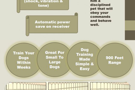 How to use dog training collars Infographic