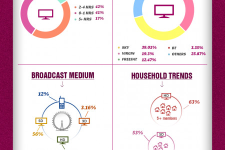 How UK Watched The London 2012 Olympics on TV  Infographic