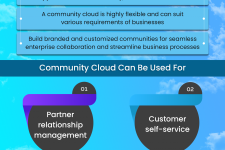 How Your Business Can Leverage The Power of Salesforce Community Cloud? Infographic