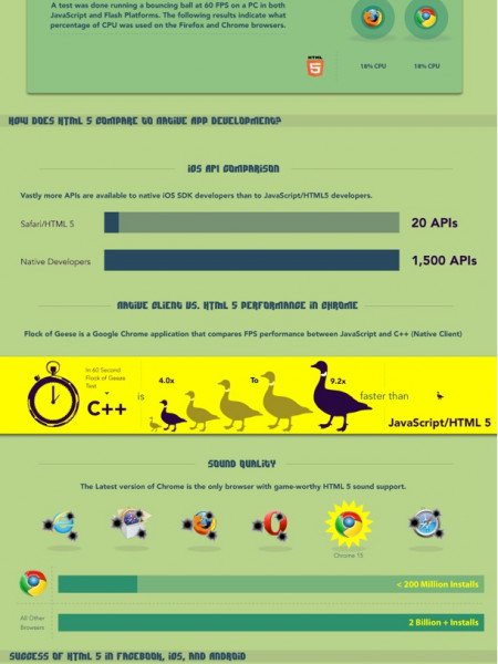 HTML 5: HYPE VS REALITY Infographic
