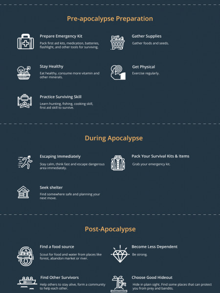 Apocalypse Survival: Complete Beginner Guide Infographic
