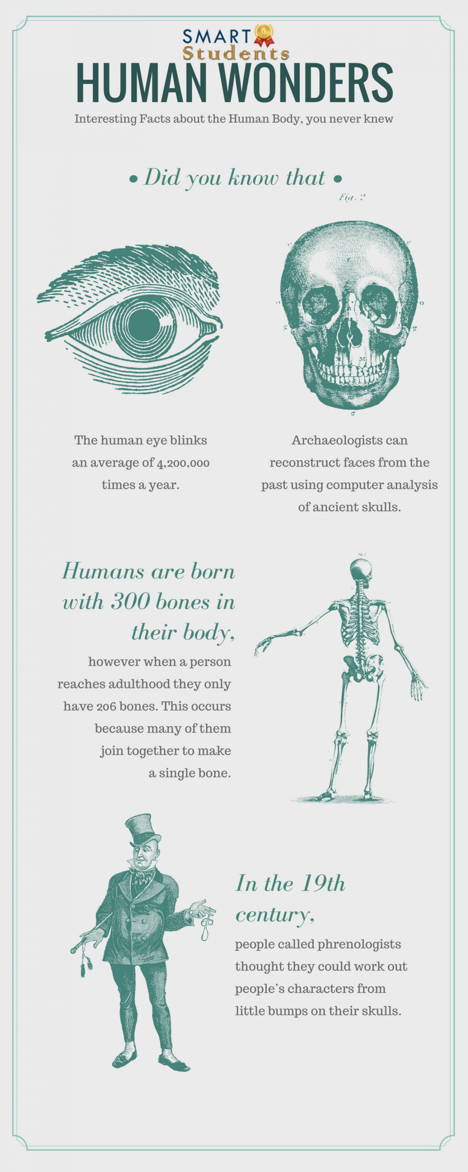 Human Wonders From Smartstudents Infographic