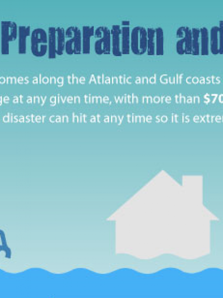 Hurricane Preparation and Recovery Infographic
