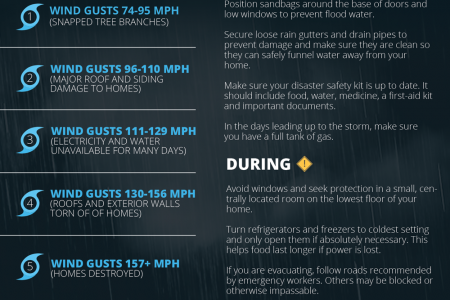 Hurricanes 101: What to Know to Weather the Storm Infographic