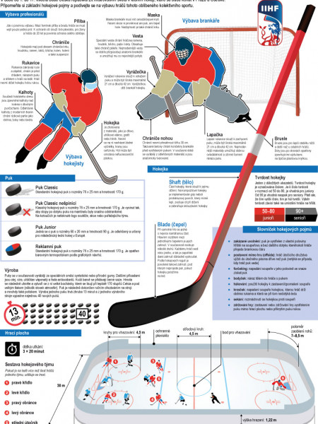 Ice hockey world  championship 2015 Infographic