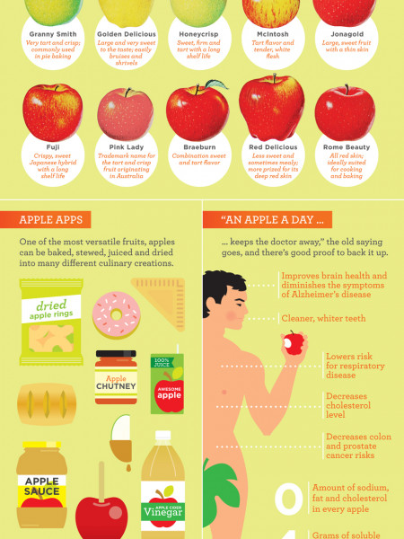 Mother Nature's Pop Science Guide to Apples Infographic