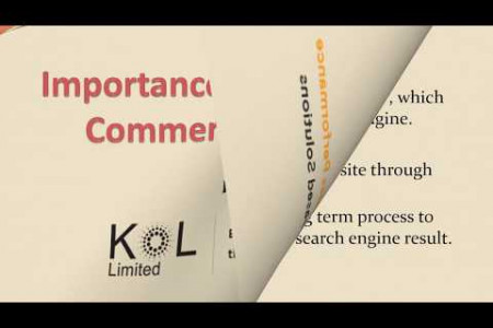 Importance of SEO for E Commerce Website Infographic