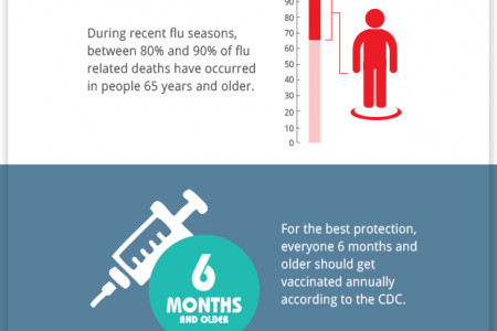Importance of the flu shot Infographic