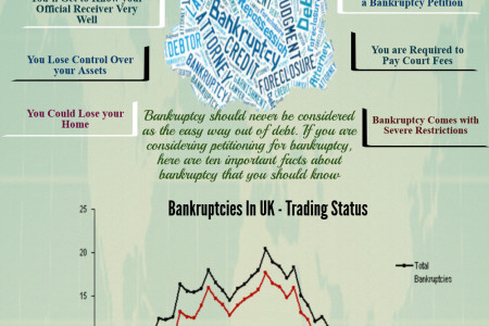 Important Facts About Bankruptcy Infographic