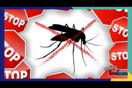 Important Mosquito Control Tips for Your Home Infographic