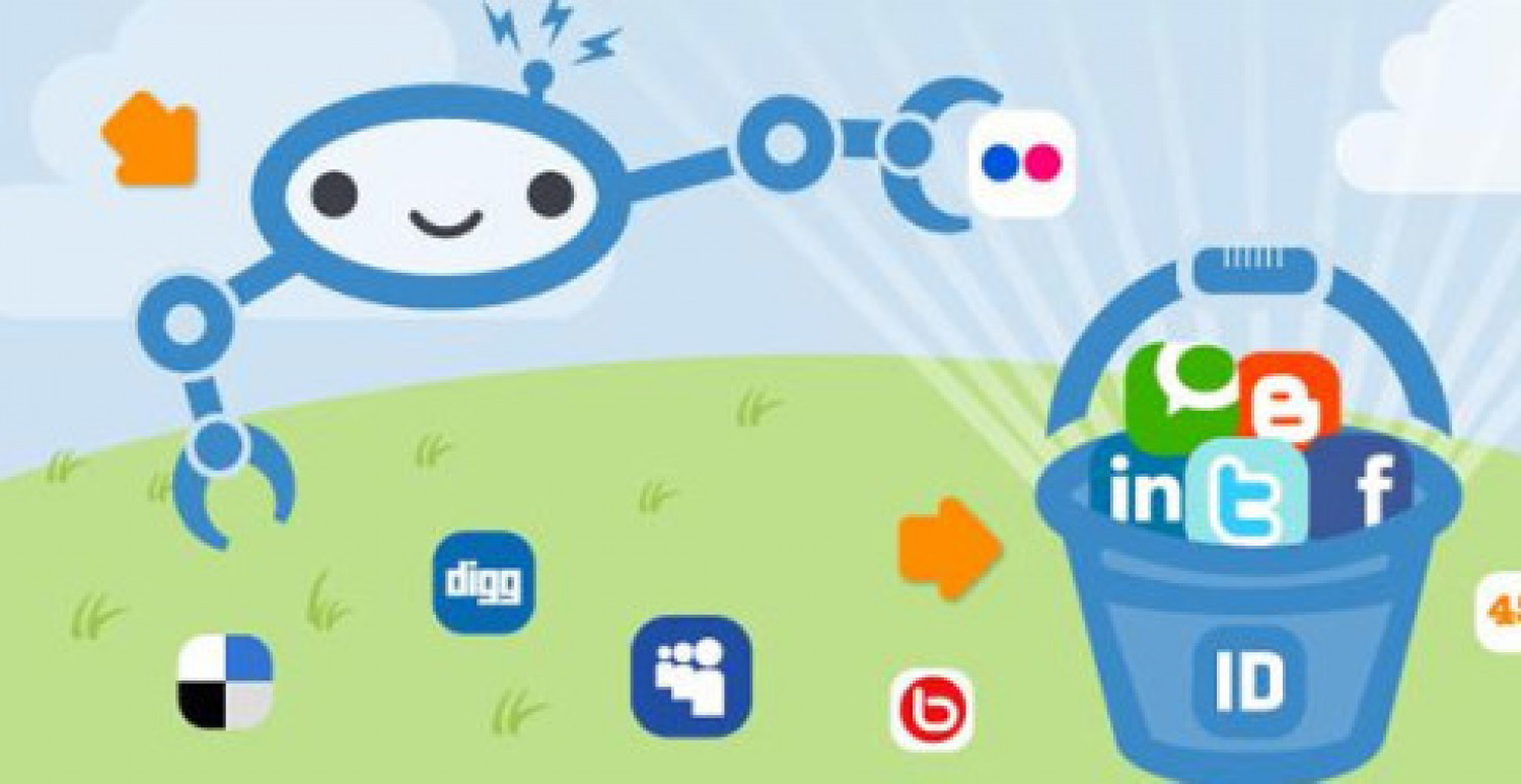 Important Social Network Plugin For WordPress Infographic