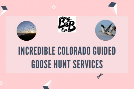 Incredible Colorado Guided Goose Hunt Services Infographic