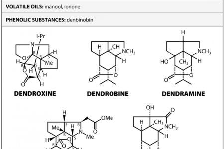 In-depth info on Dendrobium chemical constituents  Infographic
