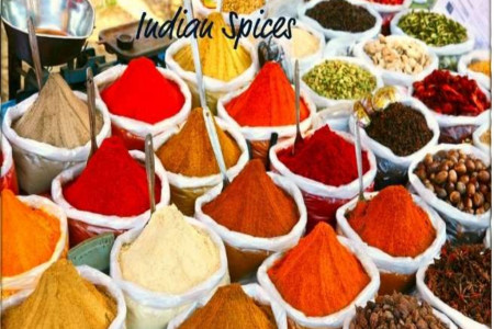 Indian Spices Infographic
