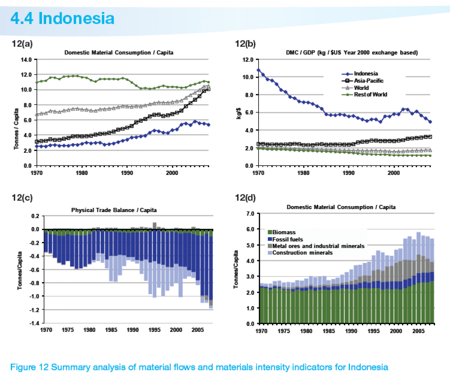 INDONESIA : Summary analysis of material flows and materials intensity indicators Infographic