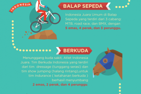 Indonesia Team Achievement on SEAGames 27 Infographic