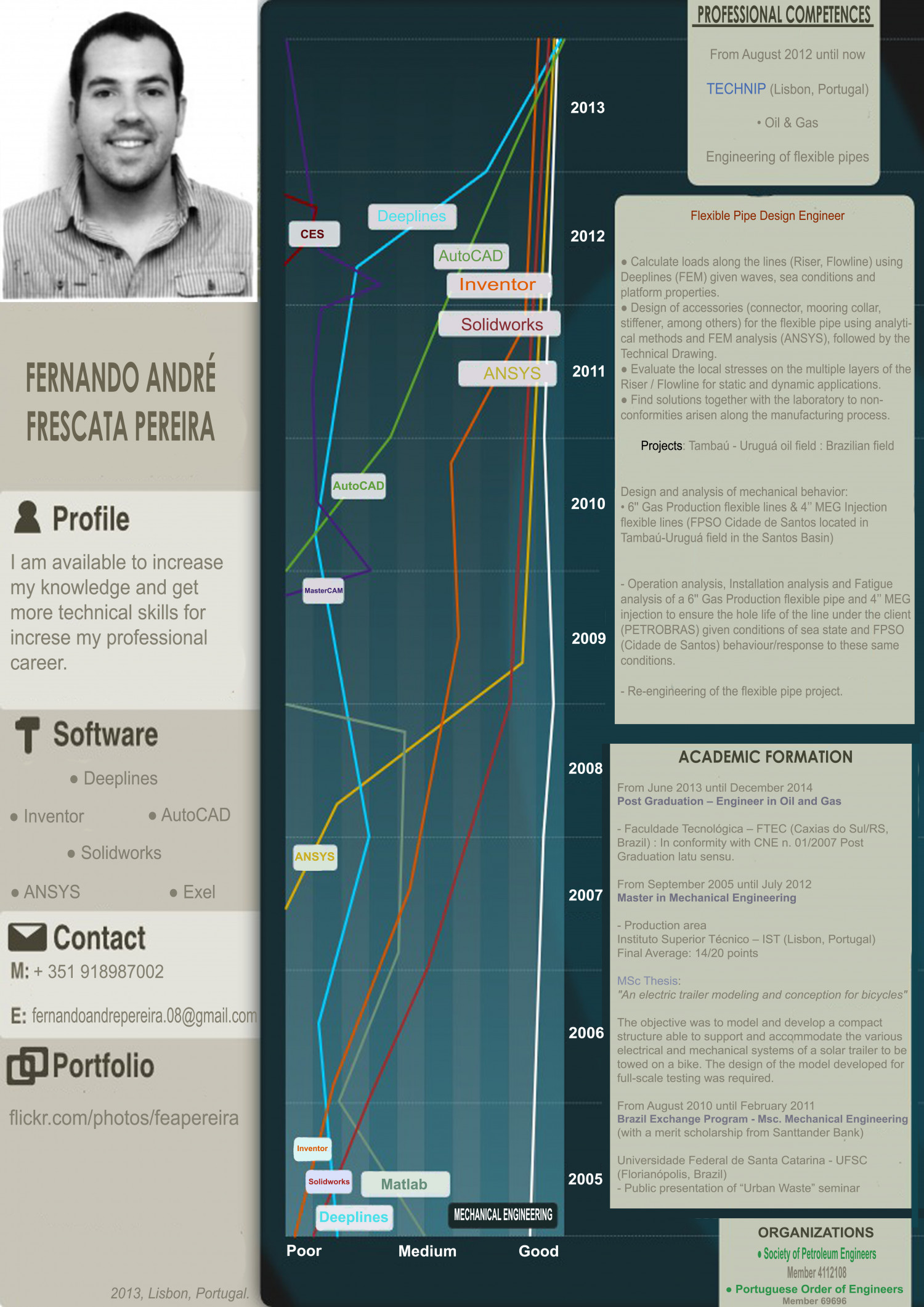 Infographic CV feapereira Infographic