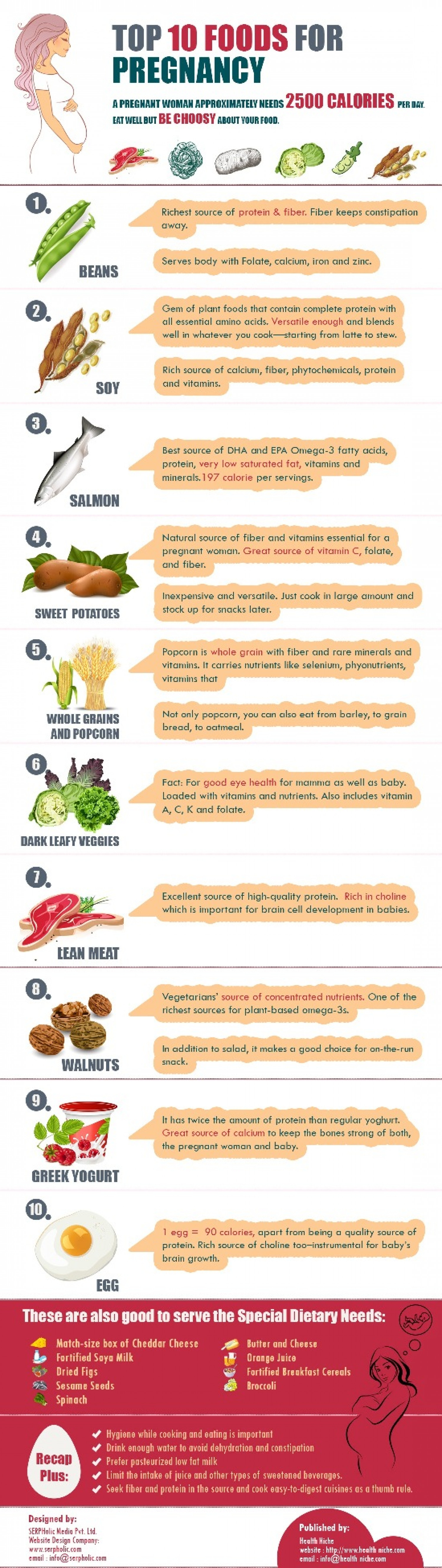 Top 10 Foods for Pregnancy Infographic